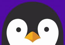 Linux Nedir?